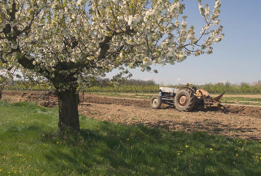 Tracteur dans la campagne à nini