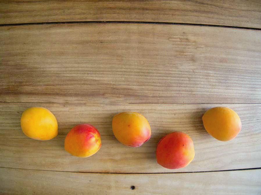 Moelleux à l'abricot 2
