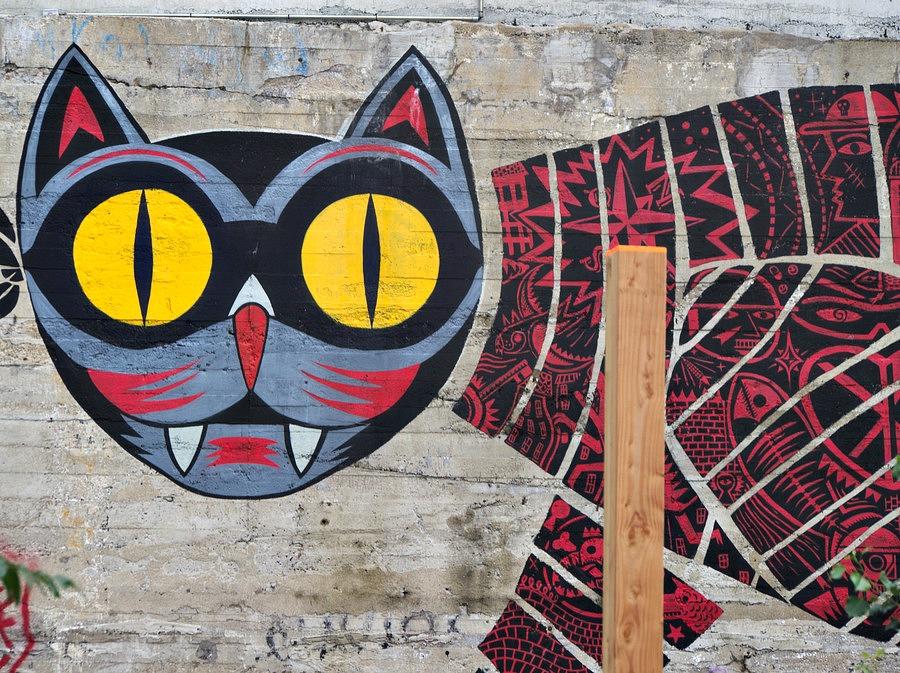 Graphe au chat rouge
