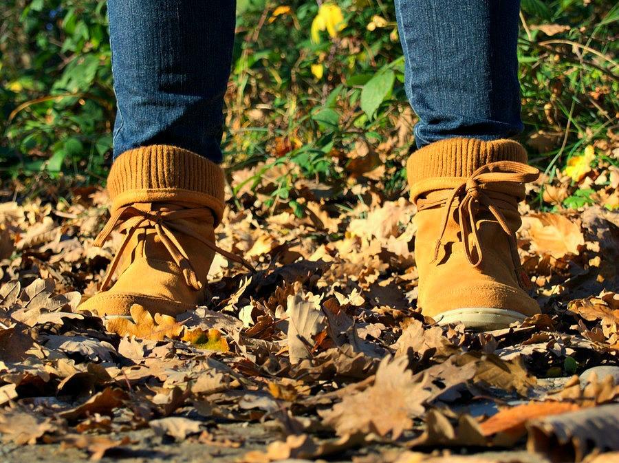Minnetonka dans les feuilles de Novembre