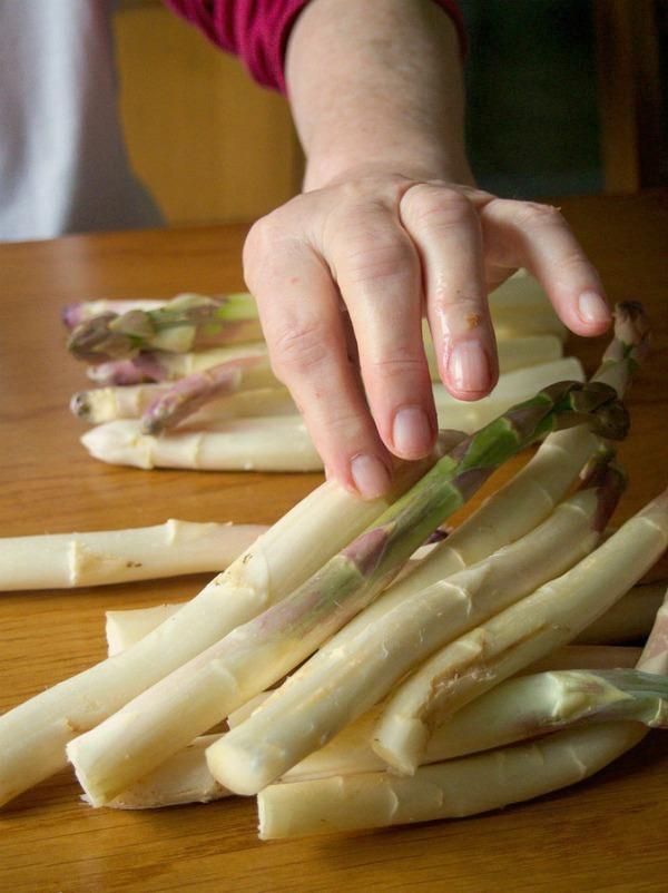 Leçons de cuisine en asperges blanches