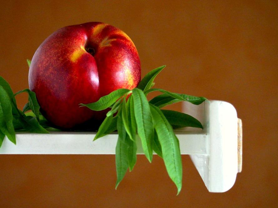 Nectarines et verveine pour la recette des nectarines rafraichies