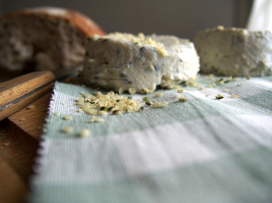 Petits fromages frais vegan au chanvre