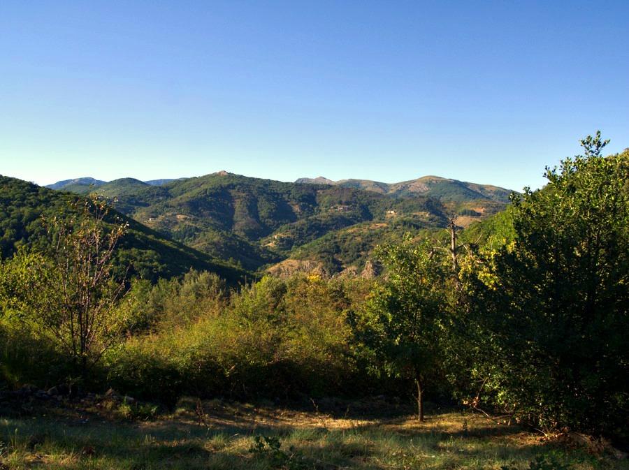 Monts d'Ardèche depuis Neyrac le vieux