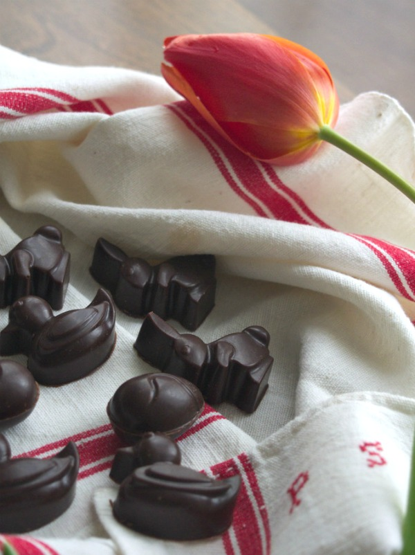 Chocolat de Pâques - Caroube et Cramberries